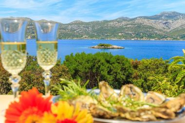 Holiday home Marija - great location and view H(6+2) Cove Tri zala (Zrnovo) - Island Korcula  - Croatia